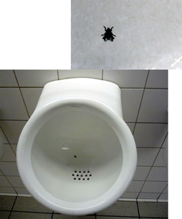 Fly in Urinal