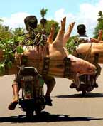Fear and Loathing in Phnom Penh: Mekong Express Toots Its Horn