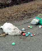 Um, The Bunny Won't Be Making It To Your House On Sunday