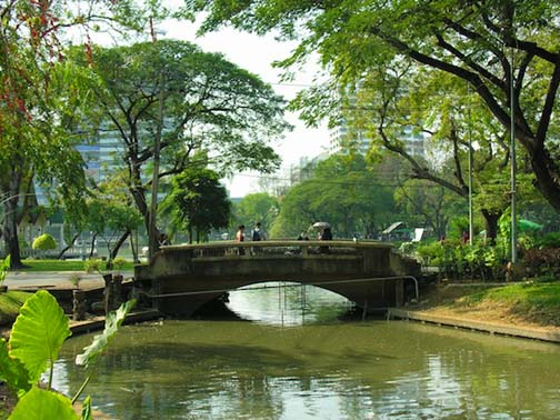 Tranquility awaits smack dab in the middle of Bangkok's hustle and bustle.