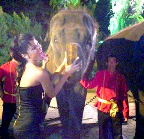 Even stealing Miley's tongue action for the shot didn't impress the elephant. Knowing how well she takes Chris Brown's trunk-like appendage might have though.