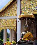 Speaking Nav'i at Wat Chedi Luang in Chiang Mai