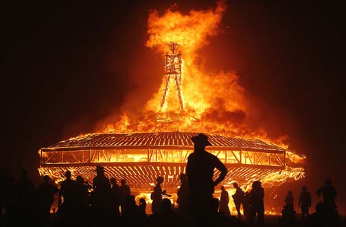 Burning Man (aka A Bonfire For Bonobos) is coming and it promises to a hot time.