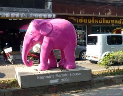 Looking for the elephant experience in Chiang Mai? Just follow the hard to miss signs.